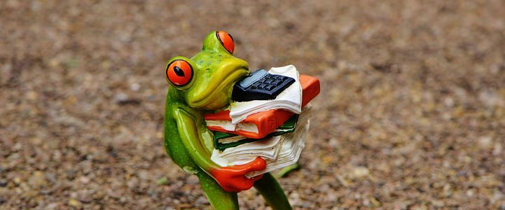 grenouille qui posrte des dossiers administratifs